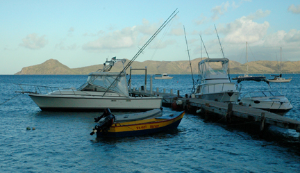 Nevis for Deep sea fishing st lucia