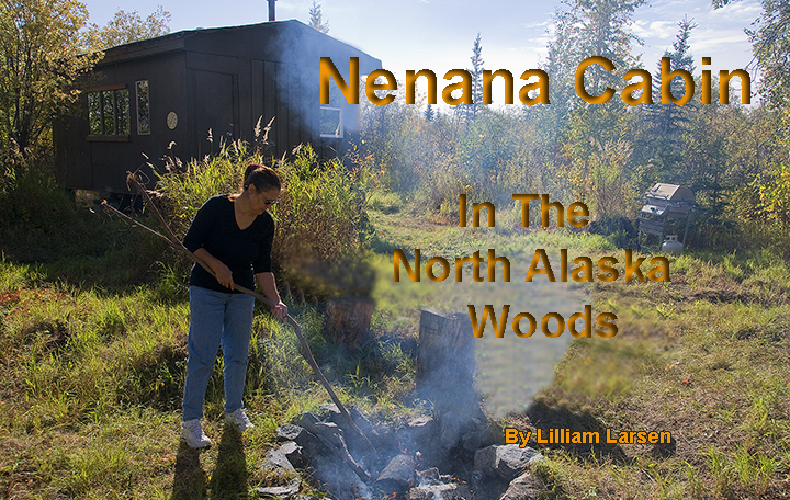 """nenana guys The """"ask a builder"""" series is dedicated to answering some of the many questions fairbanks residents have about building, energy and the many other parts of home life the log home made of."""