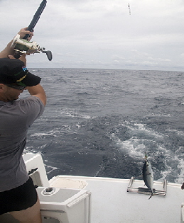 Fiji Offshore Fishing