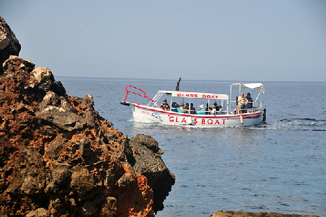 Glass bottom boat tours