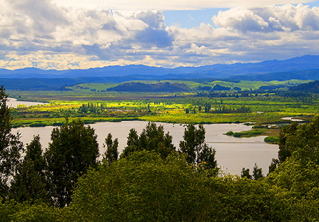 Lake Taupo scenic view