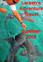 Summer 2008 Cover