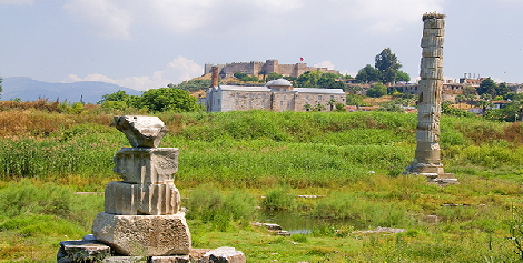 Remains of Temple of Diana with mosque, Basilica and Fort in background